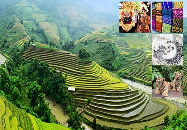 Paket Tour Ubud Bali